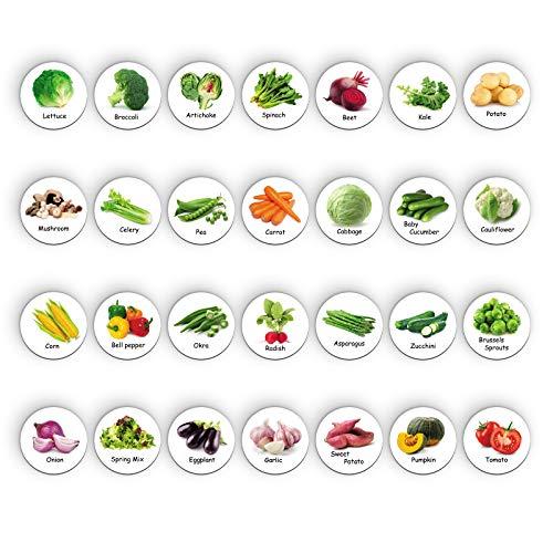 Imanes de nevera para nevera, bonito imán decorativo para cocina, hogar, oficina, escuela, aula, pizarra blanca (28 verduras)