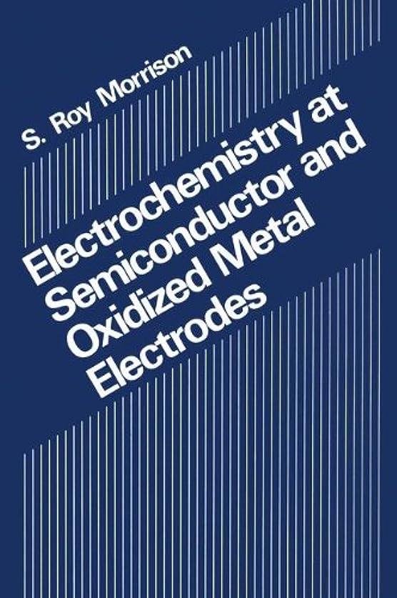 サーキットに行くコンベンション魅力的Electrochemistry at Semiconductor and Oxidized Metal Electrodes