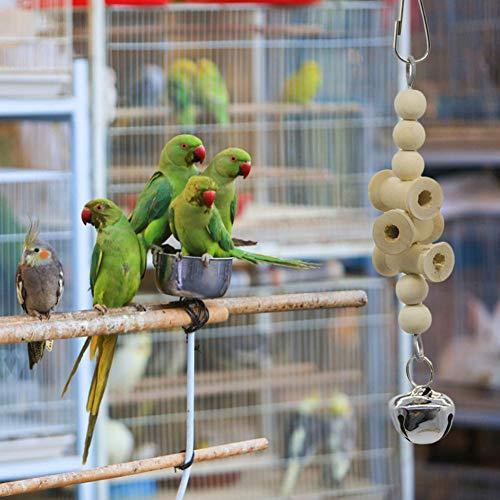 Blue Budgie Bird Birds Home Gift #14623 2 x Coasters