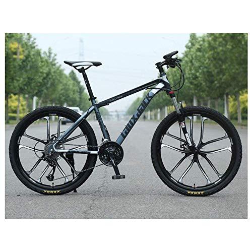 Chenbz Deportes al Aire Libre Bicicleta de montaña 21 Velocidad de Doble Freno de Disco de 26 Pulgadas de 10 radios de la Rueda Delantera de la Bicicleta de suspensión, Gris