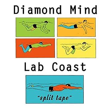 Split Tape (W/ Lab Coast)