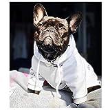 N/A Ropa para Perros Ropa De Camiseta Transpirable para Perros Pequeños para Bulldog Francés Chihuahua Abrigo De Algodón De Verano Traje De Perro Mascota Grande Mediana Pequeña Primavera