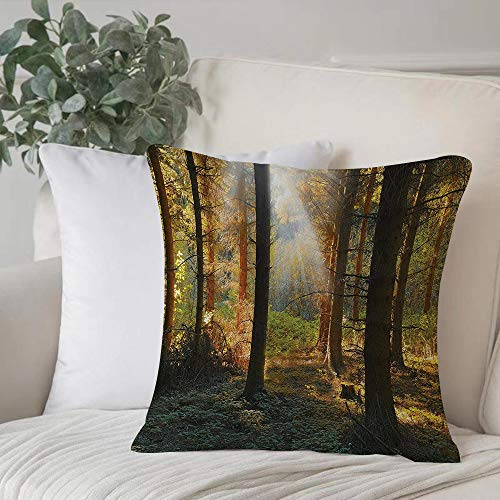 Poliestere morbido copricuscino decorativo,Set di fattoria, Sunset View of Dark Pine Forest in Autumn Fogg,di federe per cuscini di per salotto divano camera da letto con cerniera invisibile,45x45cm