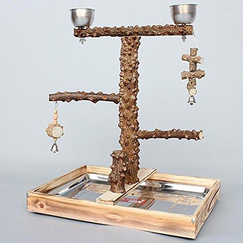 Myyxt Pappagallo giocattoli Swing esercizio con campane bird standing frame pepe legno
