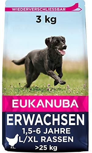 Eukanuba Hundefutter mit frischem Huhn für große Rassen, Premium Trockenfutter für ausgewachsene Hunde, 3 kg