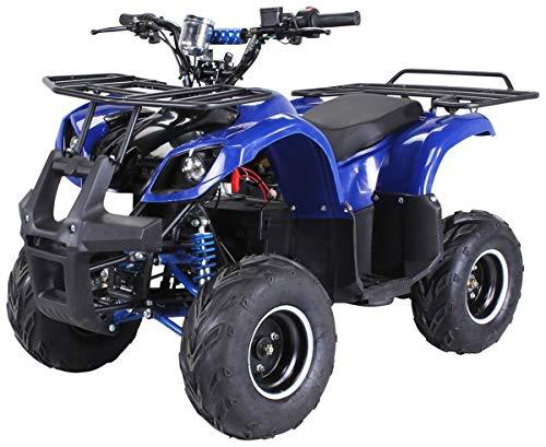 Kinder Elektro Quad S-8 Farmer 1000 Watt Miniquad (Blau)