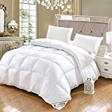 CHOU DAN EdredóN/Relleno NóRdico De Fibra Duo Cuatro Estaciones,Winter Duvet Single,Fluffy Duvet Insert White Duvet Suitable for All Seasons, Hypoallergenic, freestanding Quilt 200 * 230cm 2000g