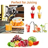 7 Stainless Steel Hand Juice Squeezer