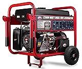 All Power America APGG12000GL 12000 Watt Dual Fuel Portable...