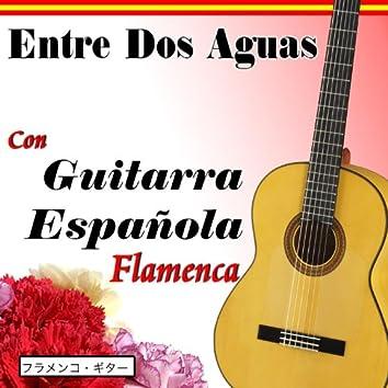 Entre Dos Aguas Con Guitarra Española Flamenca