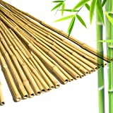 HUOB 3' Natural Bamboo Stakes, Eco-Friendly Garden Stakes, Plant Stakes Supports Climbing for Tomatoes, Trees, Beans(Pack of 20)
