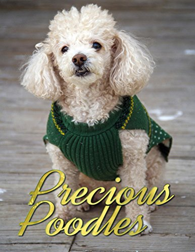 Precious Poodles (Dogs Picture Book - Precious Pooches 3) (English Edition)