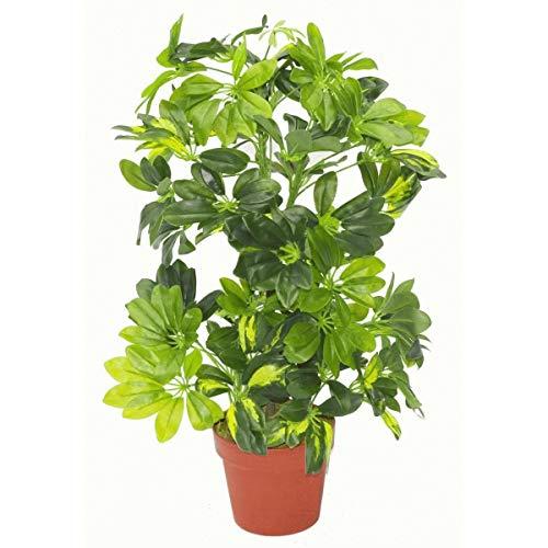 Blad 75cm Kunstmatige Schefflera Arboricola Plant Paraplu Boom Goud Capella, Deluxe