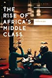 The Rise of Africa's Middle Class (Africa Now)
