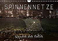 Spinnennetze - Wunder der Natur (Wandkalender 2022 DIN A4 quer): Technische Meisterleistungen der Spinnen in ausdruckstarken Bildern. (Monatskalender, 14 Seiten )
