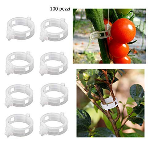 PICCOLI MONELLI Clip Plantes Support vignes légumes Fleurs Jardin et Jardin CF 100 pièces Transparentes