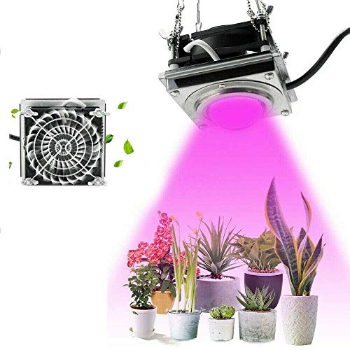 hengguang LED Grow Lights COB Pflanzenlampe 300W 4000K Vollspektrum Pflanzenwachstumslampe, Geeignet Für Zimmerpflanzen, Blumen, Gemüse, Hydrokultur, Anbau Von Sämlingswachstum