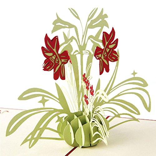 VIccoo Tarjeta de felicitación, Tarjetas 3D Narciso Cumpleaños Aniversario Día de la Madre Gracias Navidad