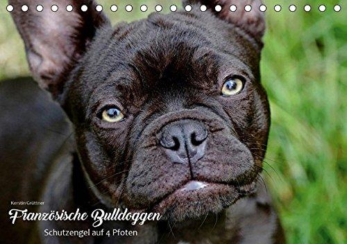 Französische Bulldoggen - Schutzengel auf 4 Pfoten (Tischkalender 2019 DIN A5 quer): Die Fotografin Kerstin Grüttner hält für Sie zwölf individuelle ... (Monatskalender, 14 Seiten ) (CALVENDO Tiere)