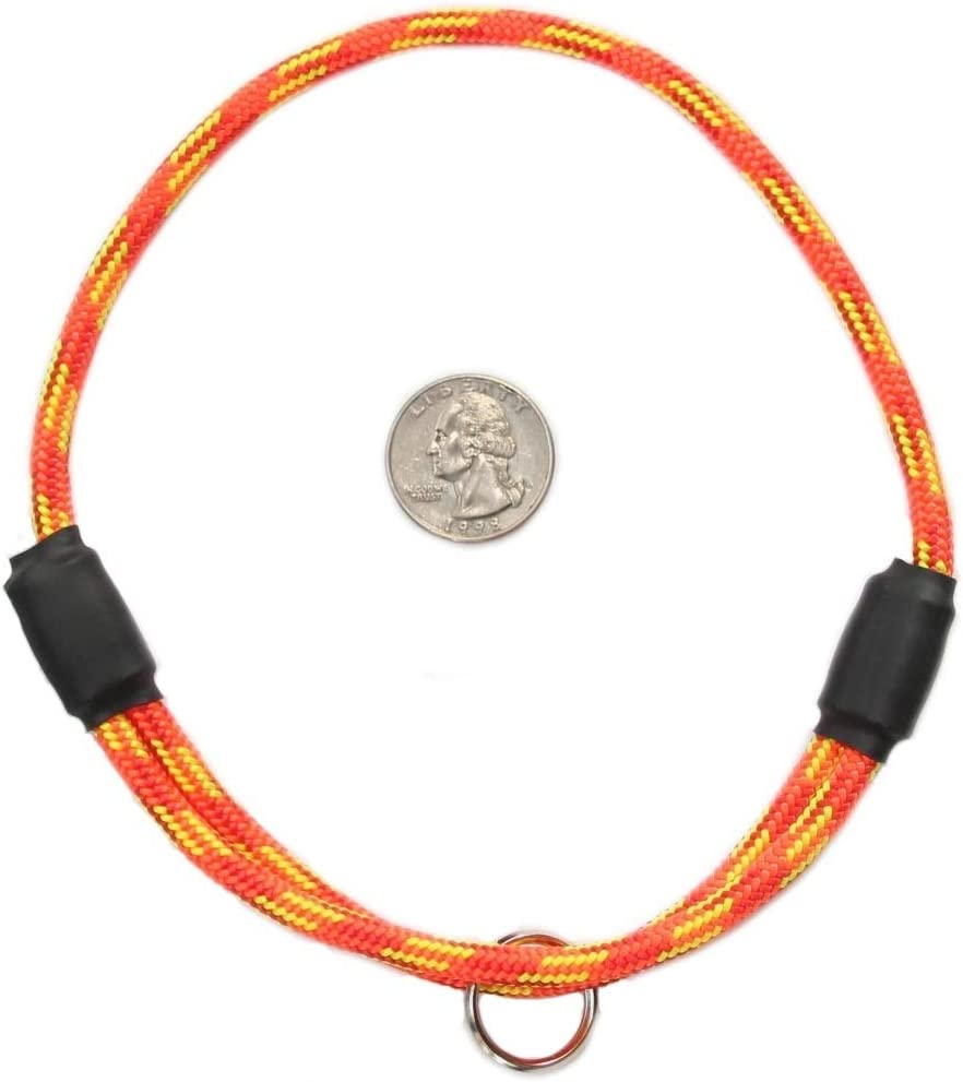 National Leash Thin Mountain Rope Dog Max 90% OFF ID M Collar- Firecracker - Large-scale sale