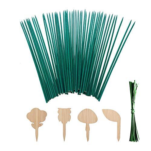 GRANDLIN Postes de madera para jardín, palos de bambú, estacas de madera de jardín, estacas de soporte de plantas florales con lazos metálicos verdes y etiquetas para plantas.
