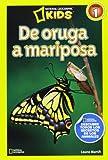 De oruga a mariposa (NG KIDS)