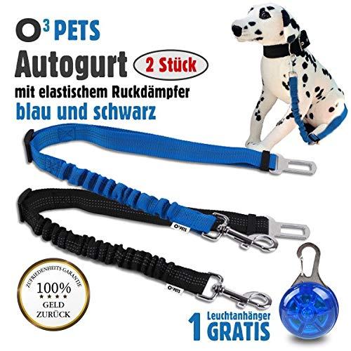 O³ PETS Hundegurt fürs Auto// 2 Stück // Anschnallgurt für Hunde mit Stecker fürs Gurtschloss // längenverstellbarer Gurt mit elastischem Ruckdämpfer // Autogurt