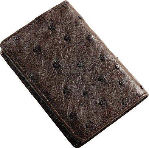 [三京商会] オーストリッチ レザー 名刺入れ フルポイント カードケース メンズ : ニコチン