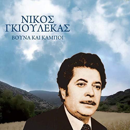 Nikos Gioulekas