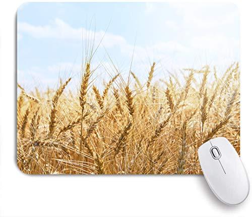 Marutuki Gaming Mouse Pad Rutschfeste,Blick auf sonniges goldenes Weizenfeld Gelbgold reife Weizen Ährchen von Weizen unter blauem Himmel Rohes Brot,für Computer Laptop Office Desk,240 x 200mm