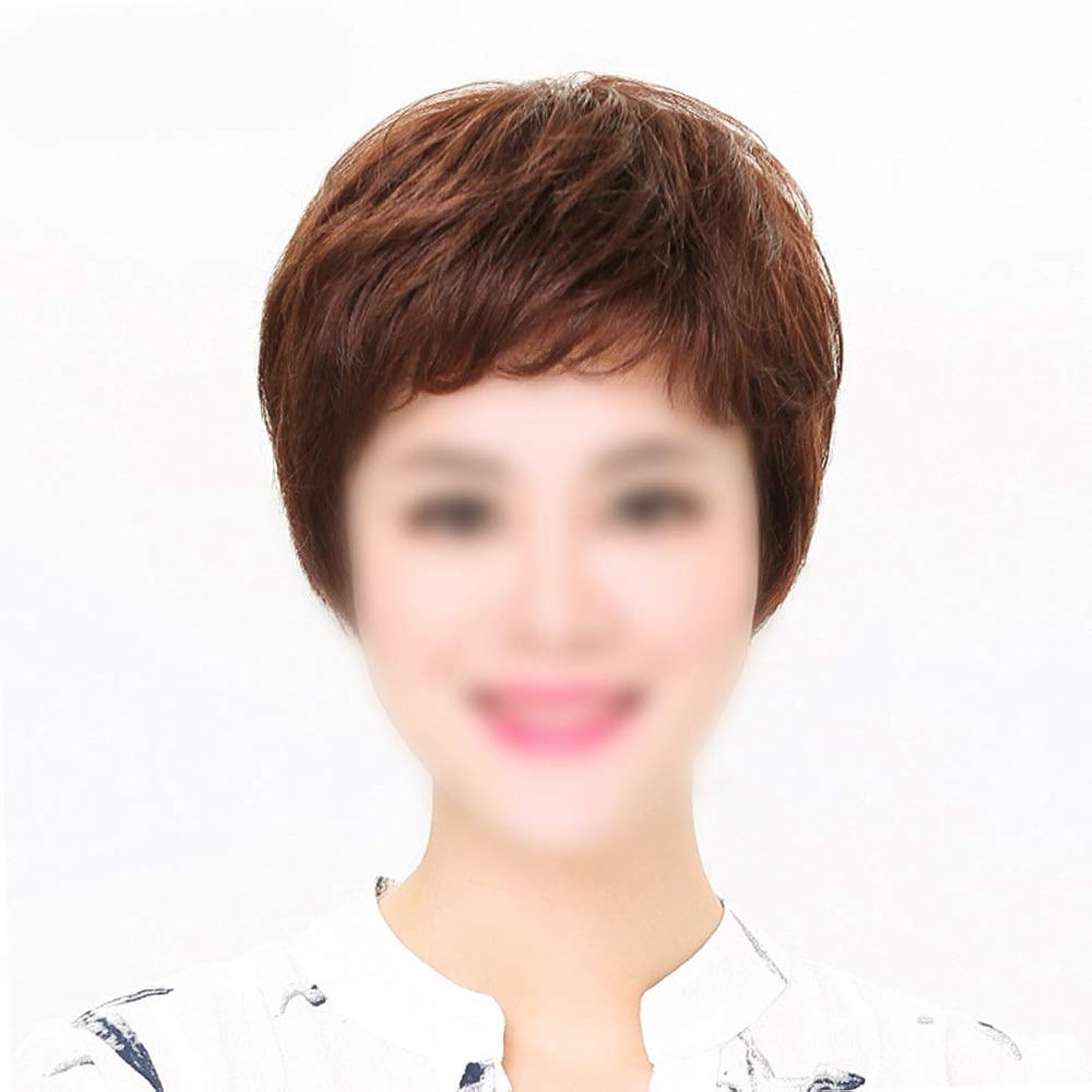 等価マンハッタン軽減するHOHYLLYA ママデイリードレスパーティーウィッグのためのかつら自然な人間の髪の毛の拡張子ストレートヘア (色 : Dark brown, サイズ : Mechanism)