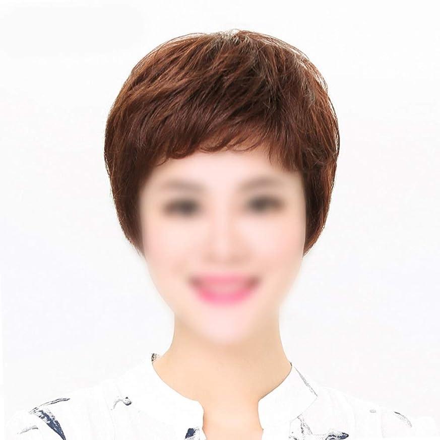 テザー解任洪水HOHYLLYA ママデイリードレスパーティーウィッグのためのかつら自然な人間の髪の毛の拡張子ストレートヘア (色 : Dark brown, サイズ : Mechanism)