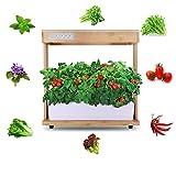Full Spectrum Multifonction Intelligent Herb Garden LED Kit Lumière Nature Cadre...