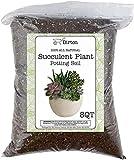 Hand Blended Succulent Soil Mix