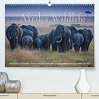 Emotionale Momente: Afrika Wildlife. Part 3. / CH-Version (Premium, hochwertiger DIN A2 Wandkalender 2022, Kunstdruck in Hochglanz): Dramatische und zugleich wunderschoene Bilder von Afrikas Tierleben. (Monatskalender, 14 Seiten )