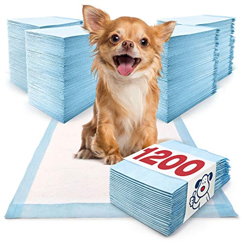 Dog Training Pads Cheapest Price