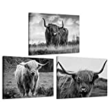 iKNOW FOTO Canvas Print Wall Art Black and White Freedom Highland Cow Pictures Painting for Living Room Bedroom Modern Home Decor Ready to Hang Stretched and Framed Artwork 12x16inchx3pcs
