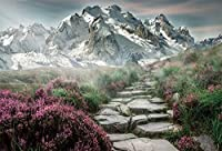 HD 7x5ft Road to Snow-Covered Mountains Background Misty Stone Path Flowers Fairytale Backdrop for Photography Partysイベントデコレーションビデオドレープフォトスタジオプロップ
