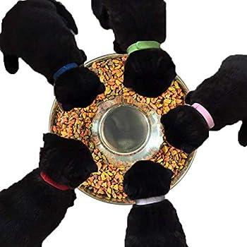 SUOXU Gamelle d'alimentation lente en acier inoxydable pour chien, peut être utilisée pour plusieurs chiots pour manger de l'eau et de la nourriture pour chien en même temps (26 cm)