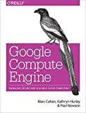 Google Compute Engine 1st edition by Cohen, Marc, Hurley, Kathryn, Newson, Paul (2014) Paperback