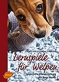 Lernspiele für Welpen: Spielerische Grunderziehung für junge Hunde