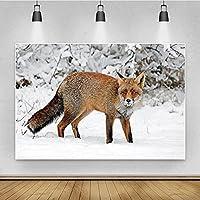 FABRICBACKGROUND++ 雪の写真撮影の背景ビニール安定性の布の写真背景動物のテーマのキツネ 、シーンデコレーションプロップ (Color : Grey3, サイズ : 10x10ft)