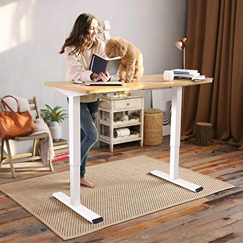 Flexispot Electric Height Adjustable Desk 48 x 30 Inches Sit Stand Desk Base Home Office Table Stand up Desk Standing Desk (White Frame + 48 in Maple Top)
