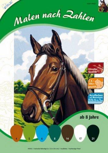 MNZ Malen nach Zahlen Pferdekopf 34x24cm