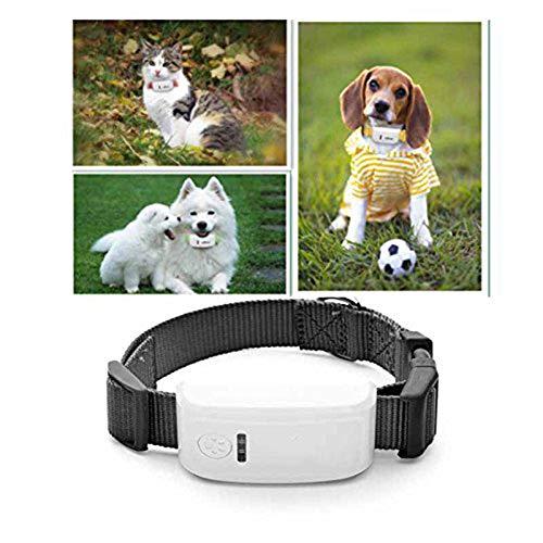 JXFS Mini Rastreador GPS Rastreador GPS para Mascotas Rastreador GPS en Tiempo Real Rastreador de Seguridad para Mascotas gsm/GPRS/GPS Localizador de rastreo de Tiempo de Espera prolongado