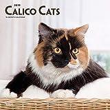 Calico Cats 2019 Square Wall Calendar