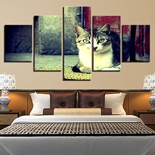 ZSHSCL kunstdruk op canvas, decoratief, bedrukt, modern, eenvoudig, lief, kat, diermotief, bedrukt, Artwork wand, kunst decoratie, kunstdruk, 5 stuks Small