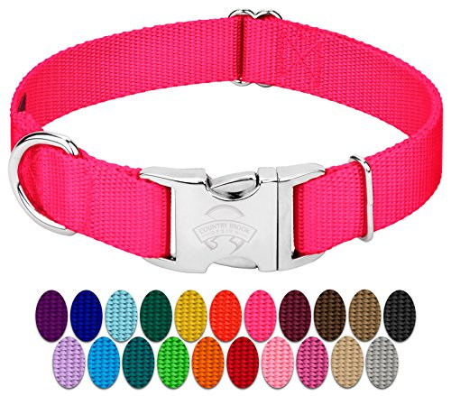 Country Brook Design - Vibrant 25 Color Selection - Premium Nylon Dog Collar with Metal Buckle (Large, 1 Inch, Hot Pink)