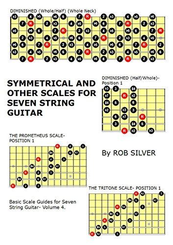 Symmetrical and Other Scales for Seven String Guitar (Basic Scale Guides for Seven String Guitar Book 4) (English Edition)