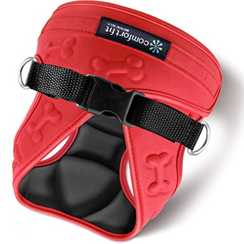 Comfort Fit Dog Harness